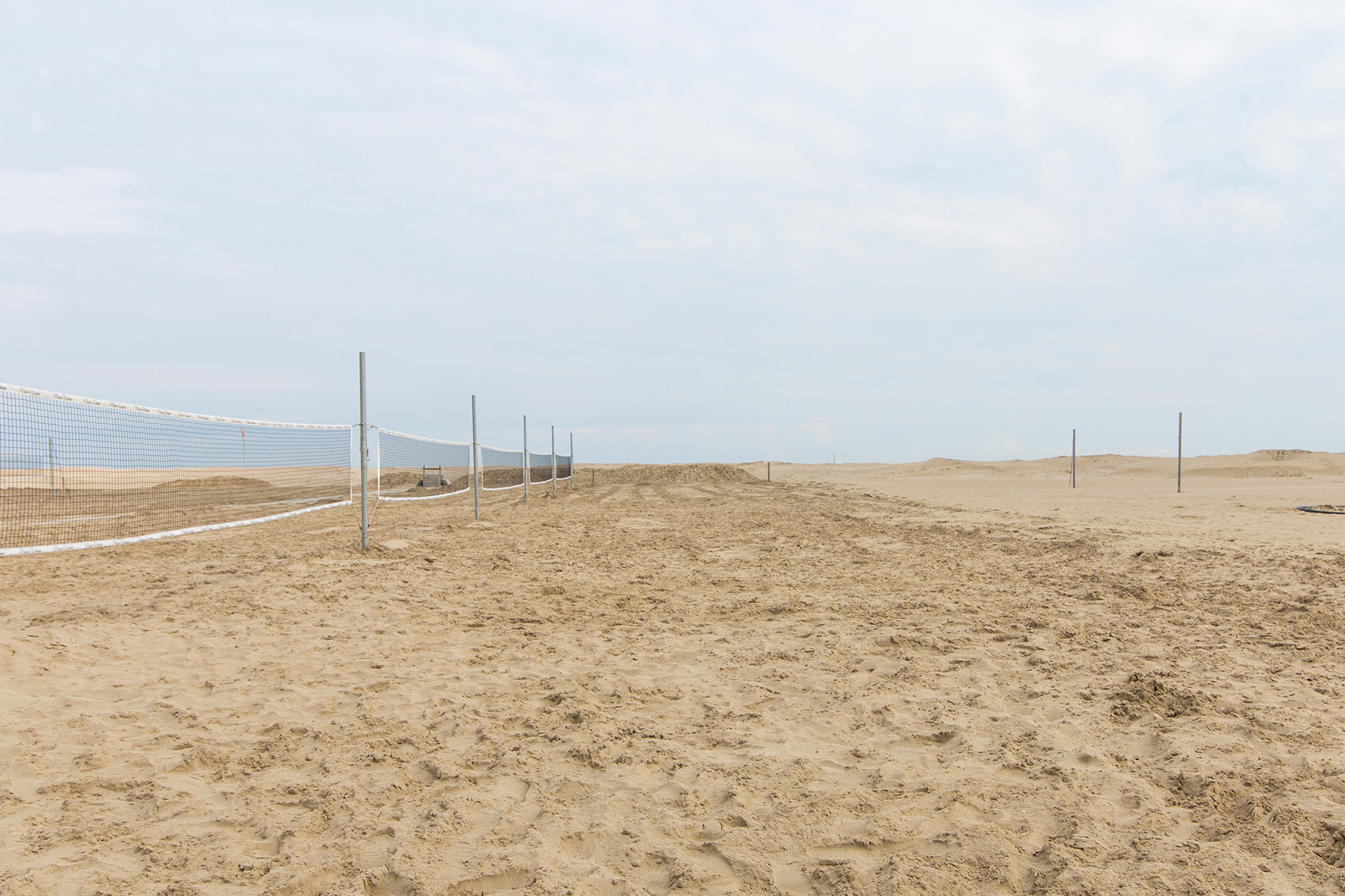 Spring On A Solitary Beach